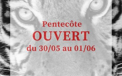 Week-end de Pentecôte le zoo sera ouvert